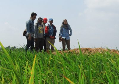 Abstract: The Comparative Study of Youth-Related Agriculture Initiatives